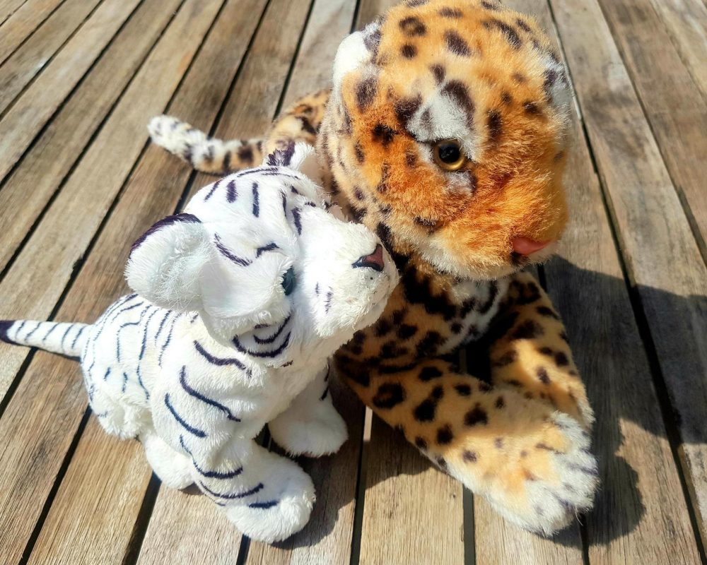 Jungle Party Soft Toys