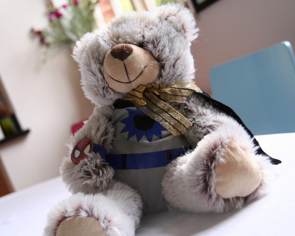 Superhero Party Super Ted