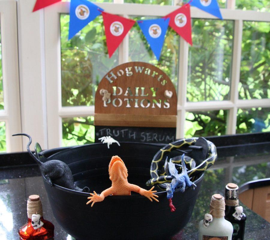 Harry Potter Party Cauldron